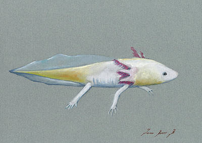 Painting - Axolotl by Juan Bosco