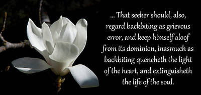 Photograph - Backbiting A Grievous Error by Baha'i Writings As Art