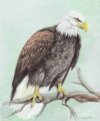 Painting - Bald Eagle by Morgan Fitzsimons