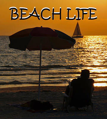 Photograph - Beach Life by David Lee Thompson