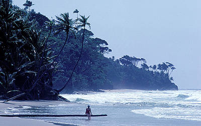 Photograph - Beach On Trinidad by Carl Purcell