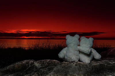 Photograph - 2 Bears by CA Johnson