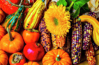 Photograph - Beautiful Autumn Harvest by Garry Gay