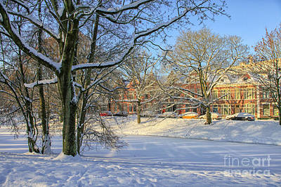 Photograph - Beautiful Park In Winter With Snow by Patricia Hofmeester