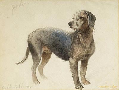 Charles Burton Barber Painting - Bedlington Terrier by Charles Burton