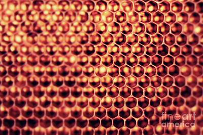 Kitchen Photograph - Beehive by MingTa Li