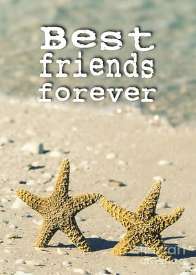 Friends Photograph - Best Friends Forever by Edward Fielding