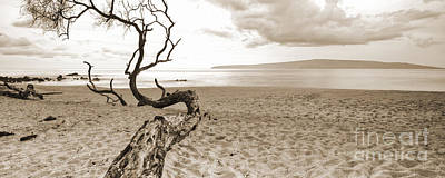 Sepia Photograph - Big Beach Maui Hawaii by Dustin K Ryan