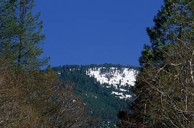Blue Dick Photograph - Big Pine Mountain by Soli Deo Gloria Wilderness And Wildlife Photography