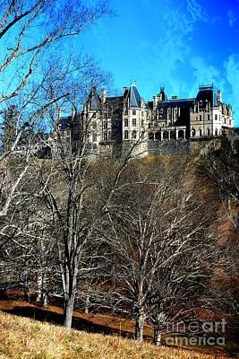 Photograph - Biltmore House by Janice Spivey