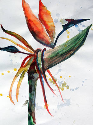 Abstract Design Drawing - Bird Of Paradise by Mindy Newman