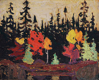 Painting - Black Spruce And Maple by Tom Thomson
