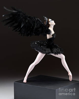 Tutus Mixed Media - Black Swan  by Vickie Arentz