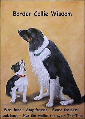 Border Collie Wisdom Art Print