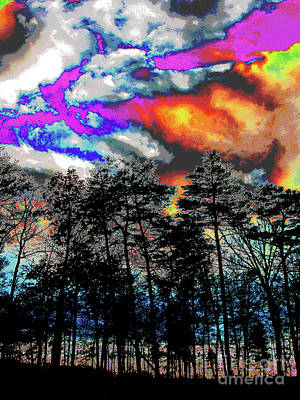 Bright Braddock Sunset Art Print