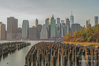 Photograph - Brooklyn Bridge Park  by Roman Gomez