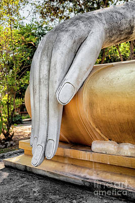 Photograph - Buddha Hand by Adrian Evans