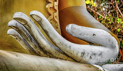Photograph - Buddha's Hand by Adrian Evans