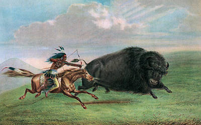 Running Horses Drawing - Buffalo Hunt by George Catlin