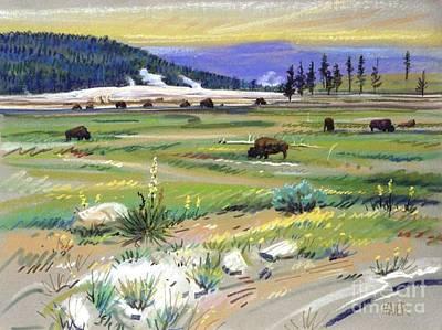 Buffaloes In Yellowstone Original