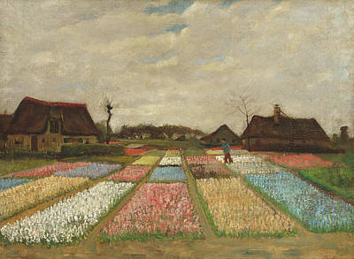 Painting - Bulb Fields by Vincent van Gogh