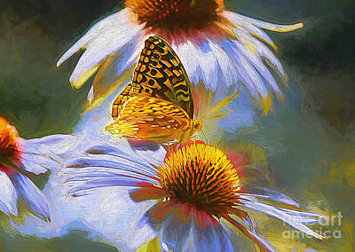 Photograph - Butterfly Daydream by Tina  LeCour