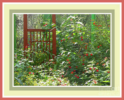Photograph - Butterfly Garden by Shirley Moravec
