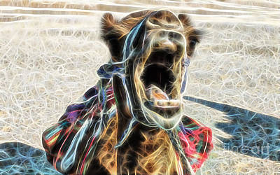 Camel Mixed Media - Camel Collection by Marvin Blaine