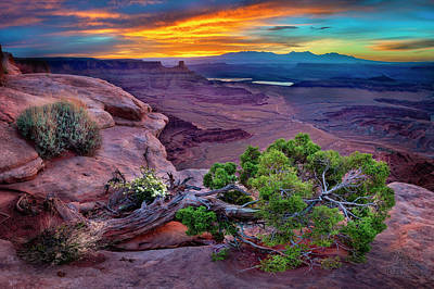 Photograph - Canyonlands Sunrise by Michael Ash