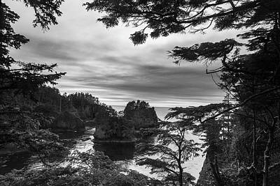 Photograph - Cape Flattery View Point by Scott Cunningham