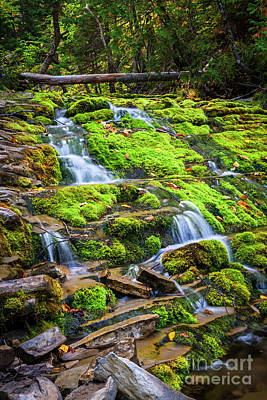 Art Print featuring the photograph Cascading Waterfall by Elena Elisseeva