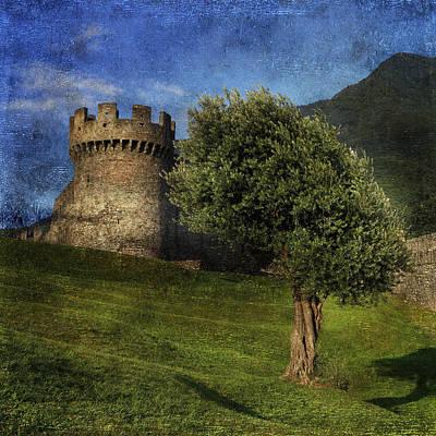 Olive Photograph - Castle by Joana Kruse