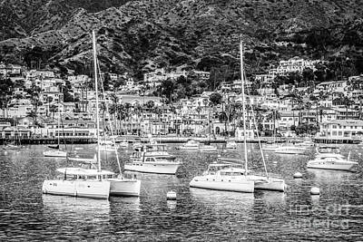 Yacht Photograph - Catalina Island Avalon Bay Black And White Photo by Paul Velgos