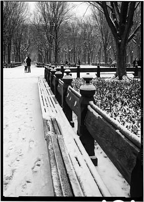 Photograph - Central Park 8 by Wayne Gill