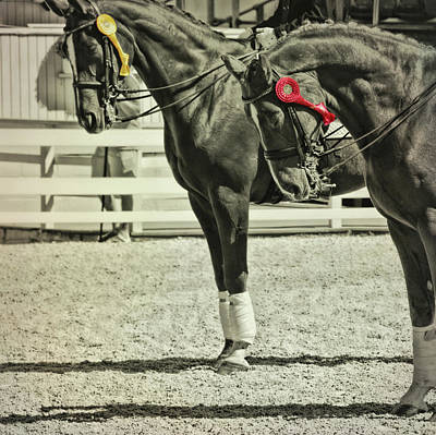 Photograph - Champions Placing by JAMART Photography