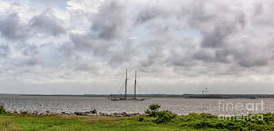 Photograph - Charleston Sailing by Dale Powell