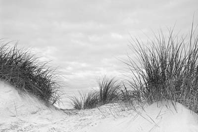 Close Up Detail Of Marram Grass On Sand Dune In Black And White Art Print by Matthew Gibson