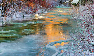 Photograph - Color Of Winter by Leland D Howard