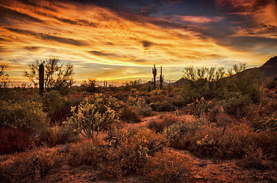 Photograph - Colorful Sonoran Skies  by Saija Lehtonen