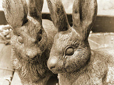 Photograph - Easter Bunnies by JAMART Photography