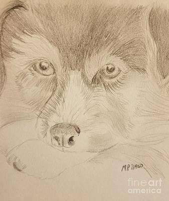 Drawing - Corgi Pup by Maria Urso