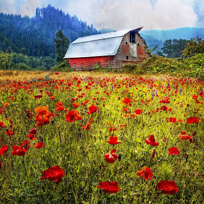 Photograph - Country Charm by Debra and Dave Vanderlaan