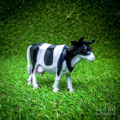 Cow Figurine Art Print by Bernard Jaubert
