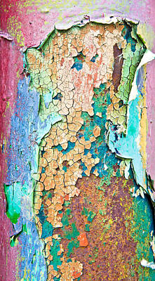 Chaps Photograph - Cracked Paint by Tom Gowanlock