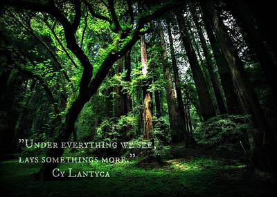 Photograph - Cy Lantyca Quote by Cyryn Fyrcyd