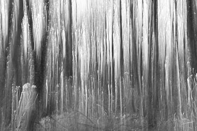 Intentional Camera Movement Photograph - Dark Forest Abstractions by Chris Dale