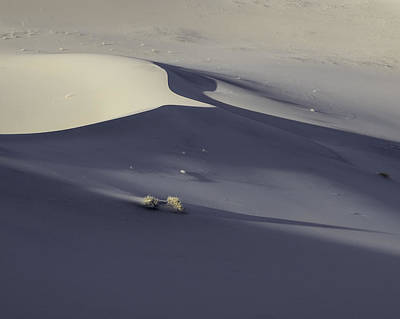Death Valley Sand Dune At Sunset Art Print