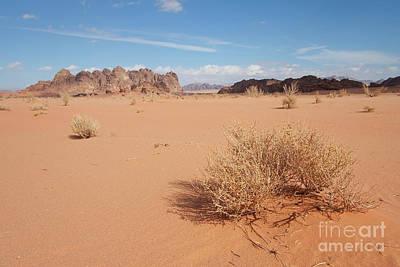 Water Droplets Sharon Johnstone - Desert of Wadi Rum by Francisco Javier Gil Oreja