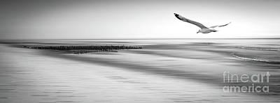 Photograph - Desire Light Bw by Hannes Cmarits