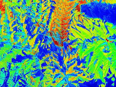 Artichoke Digital Art - Digitized Artichoke by Rich Bertolina
